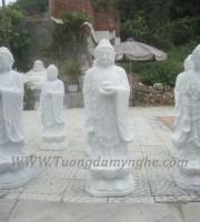 tuong-adida (1)