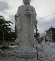 tuong-adida (4)