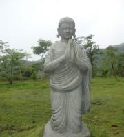 tuong-dan-sanh (9)